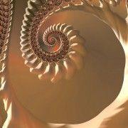 fractal fibonachi
